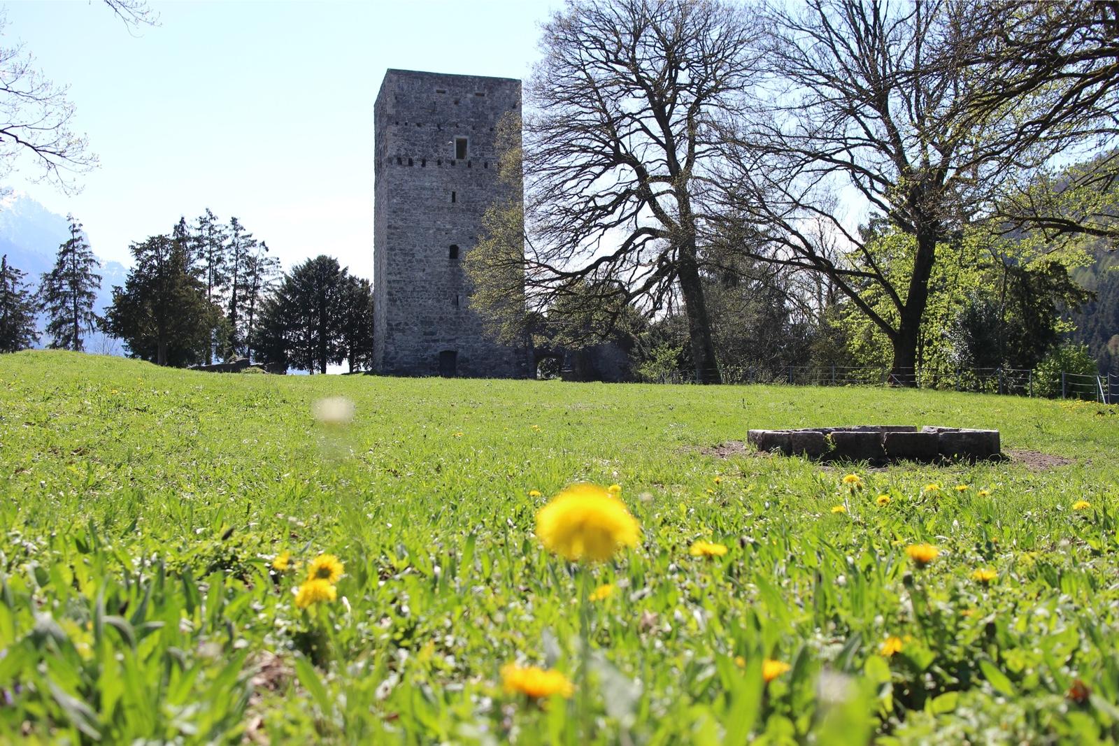 Die Tostner Burg sorgt für Diskussionsstoff