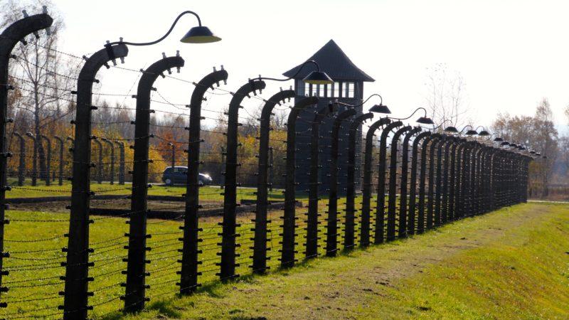 5. Mai: Gedenktag an die Opfer des Nationalsozialismus