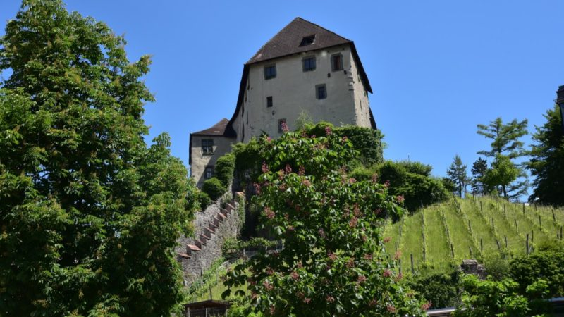 Schattenburgmuseum: Zweisprachige Führung Englisch – Deutsch