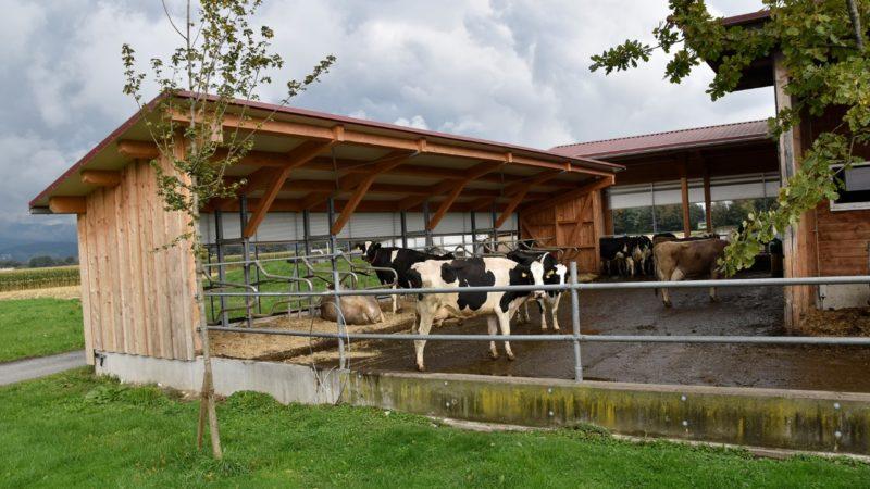 Modernisierung des Gutshofs Maldina in Brederis abgeschlossen