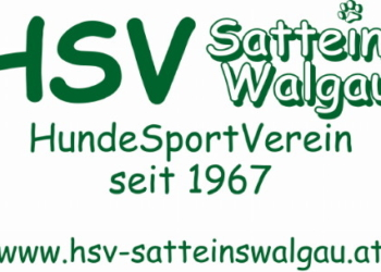 ©https://hsv-satteinswalgau.at/