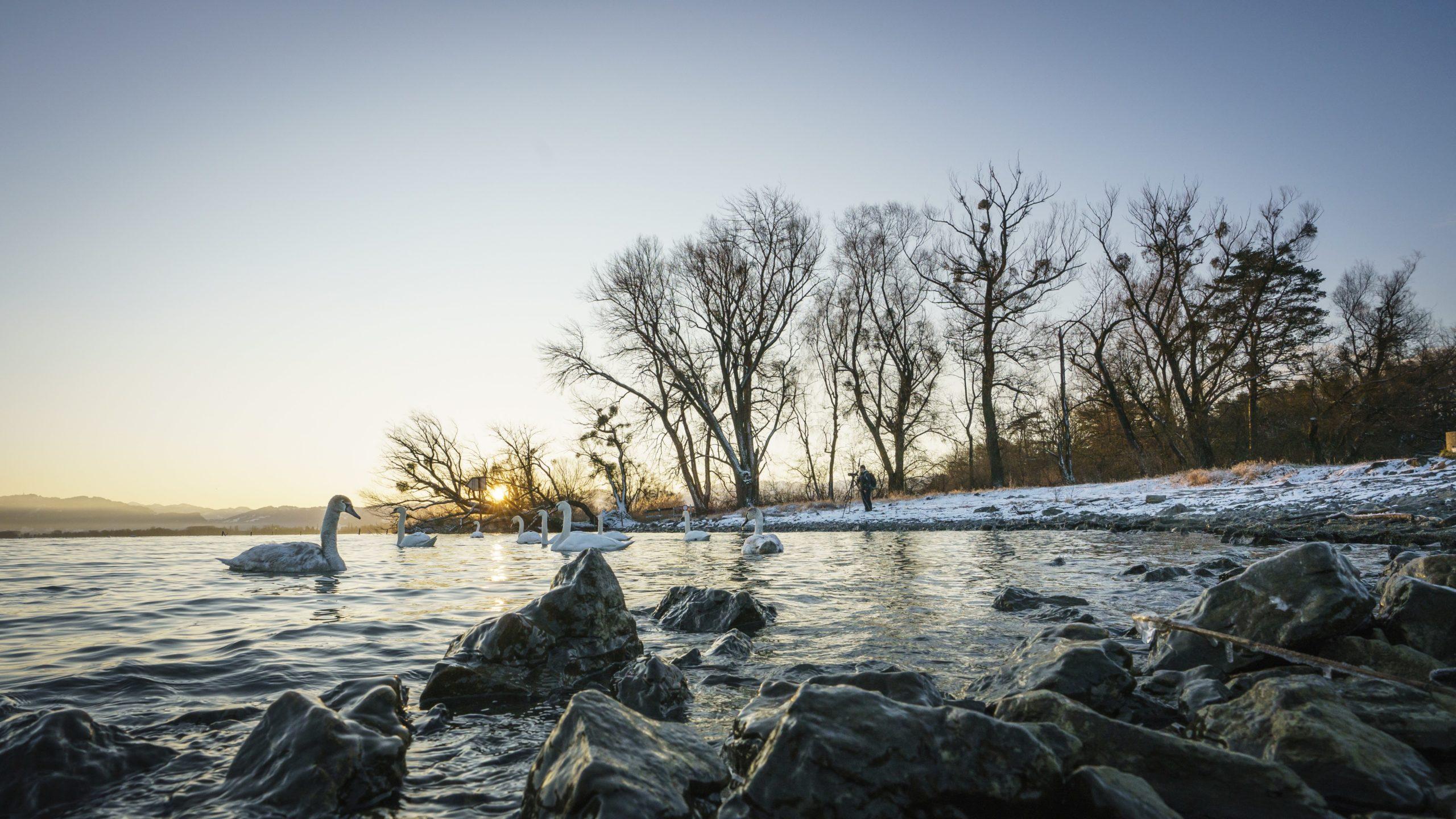 """""""Vorarlberger Naturpicknicks"""": Veranstaltungen von 16. Jänner bis 27. März"""